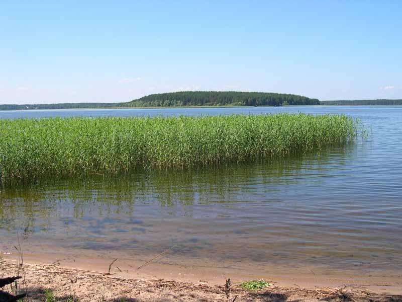 Великолепное озеро Селигер